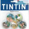 5x Imán Tintin: (+/- 3cm)