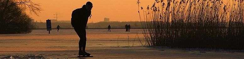 Noren schaatsen op een meer
